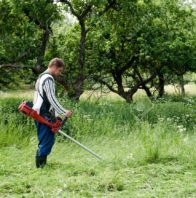 12067399-worker-cutting-grass-in-garden-with-the-weed-trimmer-Stock-Photo